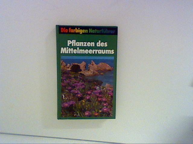 Pflanzen des Mittelmeerraums