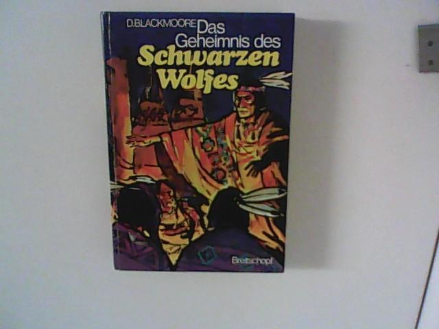 Das Geheimnis des Schwarzen Wolfes - Indianderbuch ab 12 Jahre