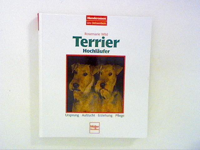 Terrier, Hochläufer