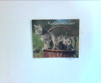 Katzenkinder. Ein Bilderbuch