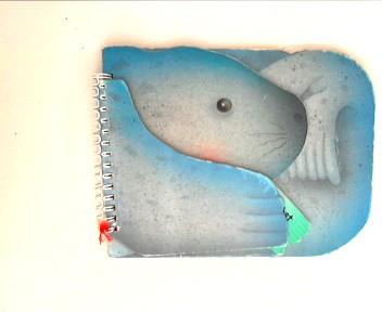 Siehst du den Seehund?