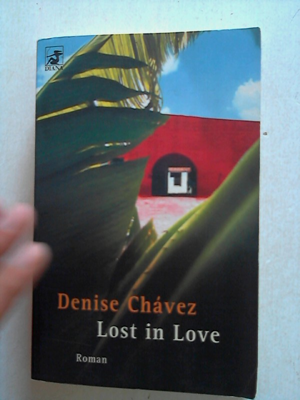 Lost in Love: Roman 1. Ausgabe