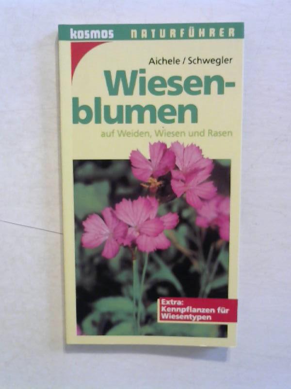 Wiesenblumen auf Weiden, Wiesen und Rasen.