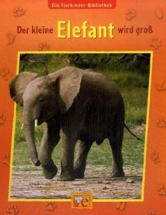 Der kleine Elefant wird groß