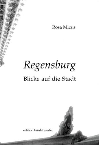 Rosa, Micus: Regensburg Blicke auf die Stadt