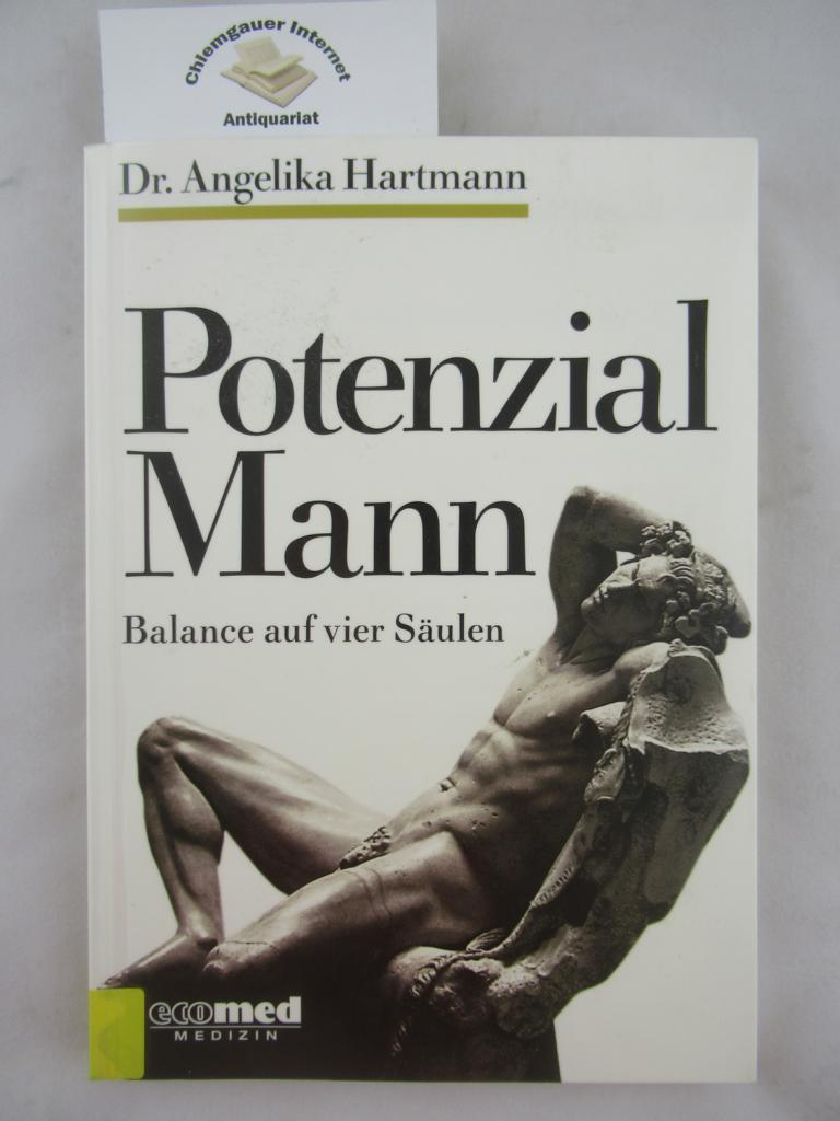 Potenzial Mann : Balance auf vier Säulen.