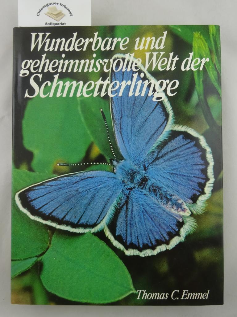 Wunderbare und geheimnisvolle Welt der Schmetterlinge.