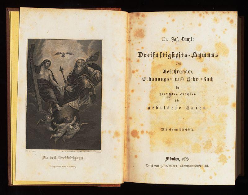 Dreifaltigkeits-Hymnus oder Belehrungs-, Erbauungs- und Gebetbuch in gereimten Trochäen für gebildete Laien. Reprint, Nachdruck.