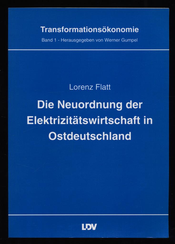 Die Neuordnung der Elektrizitätswirtschaft in Ostdeutschland. Transformationsökonomie Band 1
