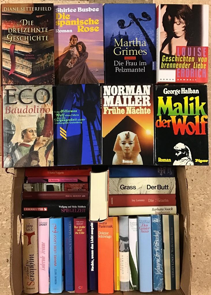 46 Bücher Romane Erzählungen Krimi Biographie Hardcover Schutzumschlag Buchpaket Paket