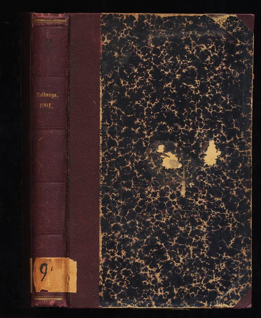 Notburga. 25. Jahrgang 1901 , Halbmonatsausgabe, Heft 1-25
