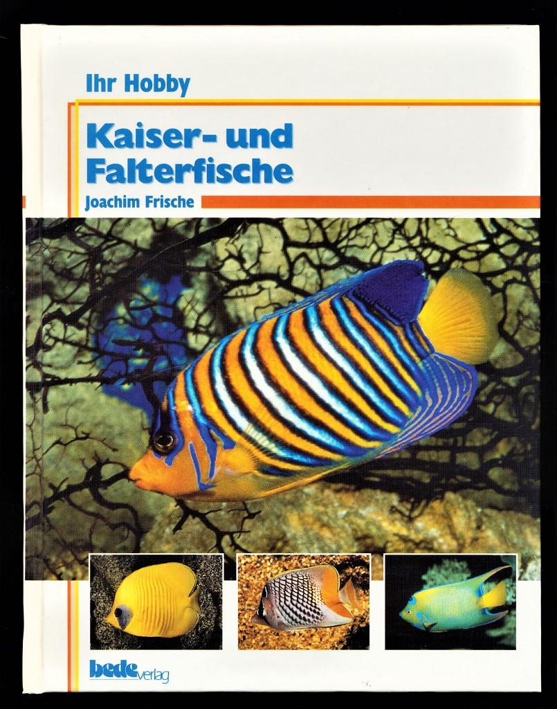 Kaiser- und Falterfische.