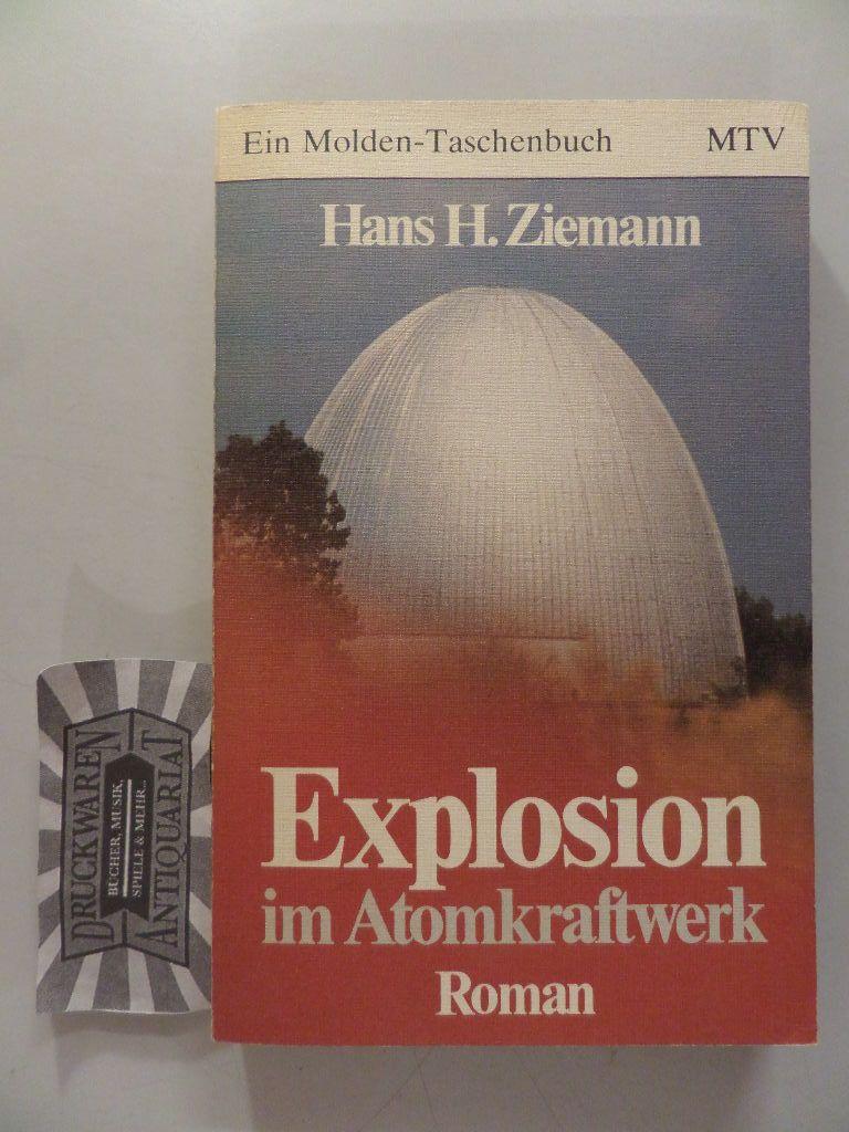 Explosion im Atomkraftwerk : Roman. 1. Aufl.
