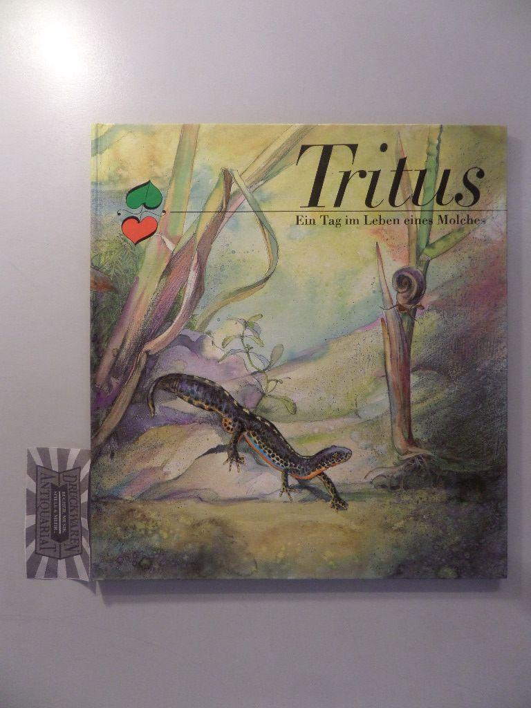Tritus. Ein Tag im Leben eines Molches.