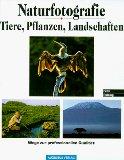Naturfotografie - Tiere, Pflanzen, Landschaften - Wege zur professionellen Qualität.
