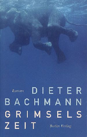 Grimsels Zeit : Roman