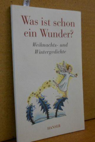 Was ist schon ein Wunder? : Weihnachts- und Wintergedichte. von Joseph Brodsky, Matthias Claudius, Joseph von Eichendorff ... Mit Bildern von Katja Wehner.