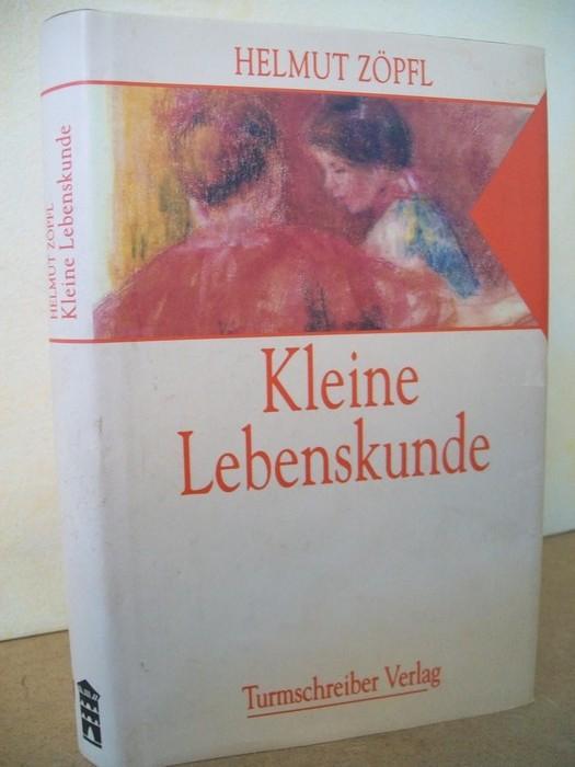 Kleine Lebenskunde : Geschichten und Betrachtungen über unsere Zeit Helmut Zöpfl