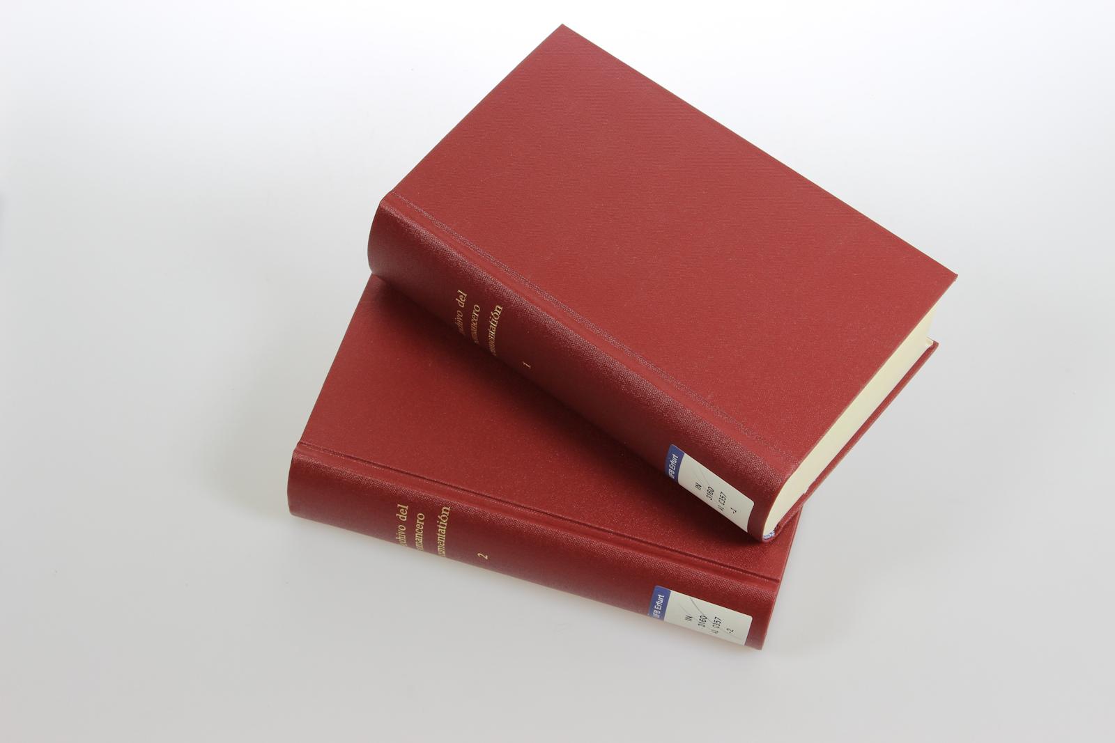 Catálogo analítico del archivo romancístico Menéndez Pidal-Goyri. A: Vol. I+II: Romances de tema nacional. [2 Vols.]. (=Archivo General del Romancero del Centro de Estudios Històricos Menèndez Pidal; 2+3/A I+II).