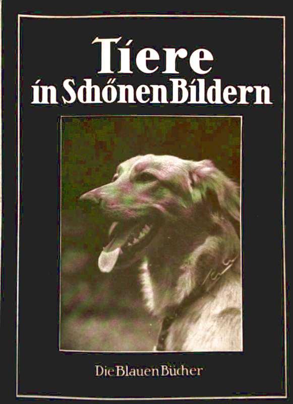Tiere in schönen Bildern - Aufnahmen aus dem Leben zumeist von deutschen Amateuren [ Alle Kreatur Gottes ist gut - 1.TIM.4] (Die blauen Bücher)