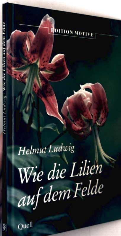 Wie die Lilien auf dem Felde (mit Farbbildern illustriert)