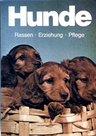 Hunde - Rassen, Erziehung, Pflege (schwarzweiß und farbig illustriert)