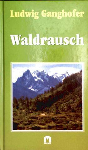 Waldrausch  [Heimatroman aus der bayerischen Bergwelt]