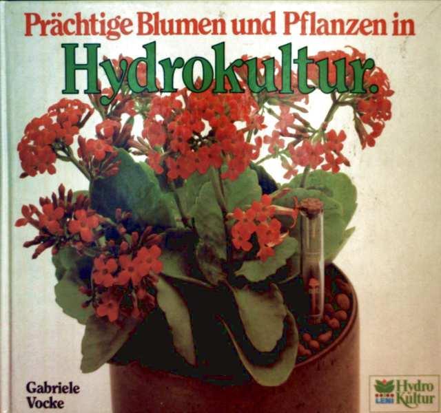 Prächtige Blumen und Pflanzen in Hydrokultur