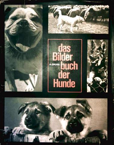 Das Bilderbuch der Hunde