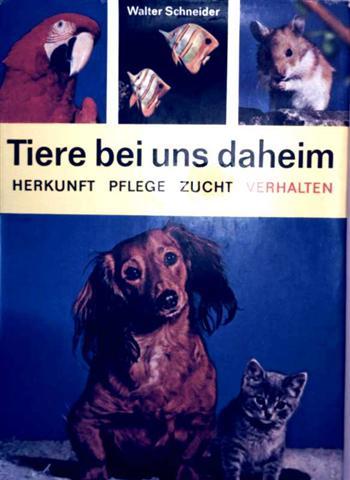 Tiere bei uns daheim - Herkunft, Pflege  Zucht, Verhalten (ein praktischer Ratgeber für alle Tierfreunde)