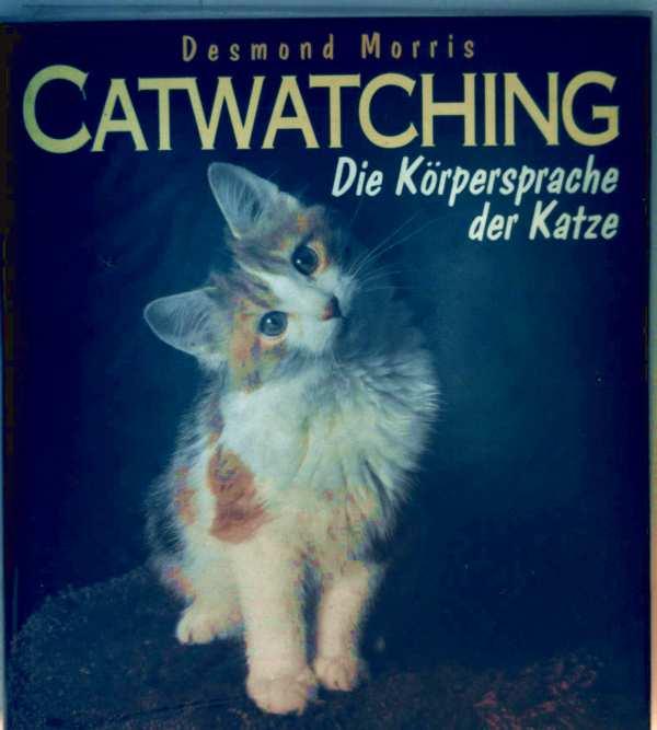 Catwatching - die Körpersprache der Katze