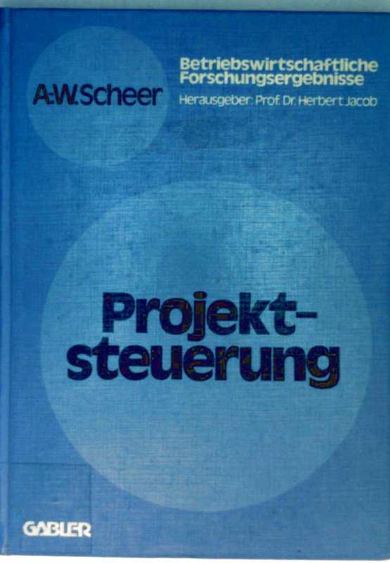 Projektsteuerung - Bd. 9: Betriebswirtschaftliche Forschungsergebnisse