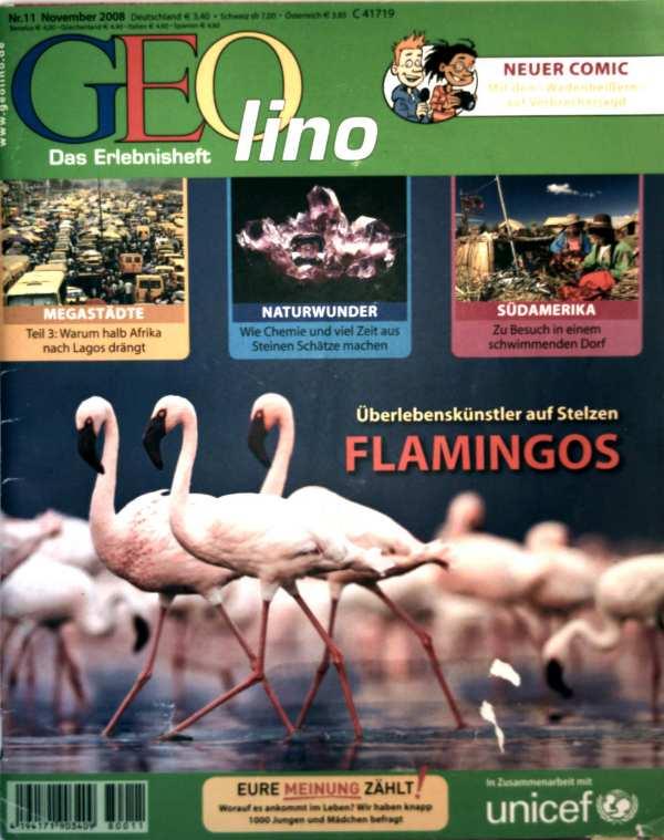 Geolino, das Erlebnisheft Nr. 11, November 2008 - Flamingos: Überlebenskünstler auf Stelzen, warum halb Afrika nach Lagos drängt, wie Chemie und viel Zeit aus Steinen Schätze machen