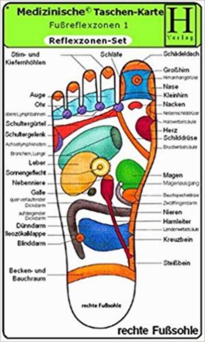 Ohne Autor: Reflexzonen Set - Medizinische Taschen-Karte: Fussreflexzonen Therapie Fusssohle, Fussrücken + Aussenseiten /Handreflexzonen