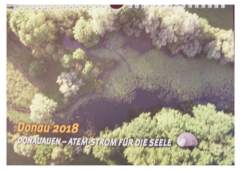 Wandkalender Donau 2018 (Monatskalender). Donauauen: Atem-Strom für die Seele