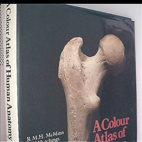 A Colour Atlas of Human Anatomy (Wolfe medical atlases)