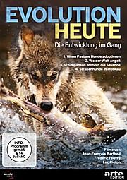 Evolution heute: Die Entwicklung im Gang: 1. Wenn Paviane Hunde adoptieren 2. Wo der Wolf angelt  3. Schimpansen erobern die Savanne  4. Straßenhunde in Moska