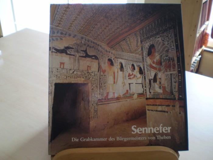 SENNEFER. Die Grabkammer des Bürgermeister von Theben. 2. Aufl.