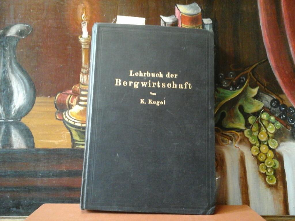 Lehrbuch der Bergwirtschaft. Mit 167 Abbildungen und 20 Formularen im Text und auf einer Tafel.