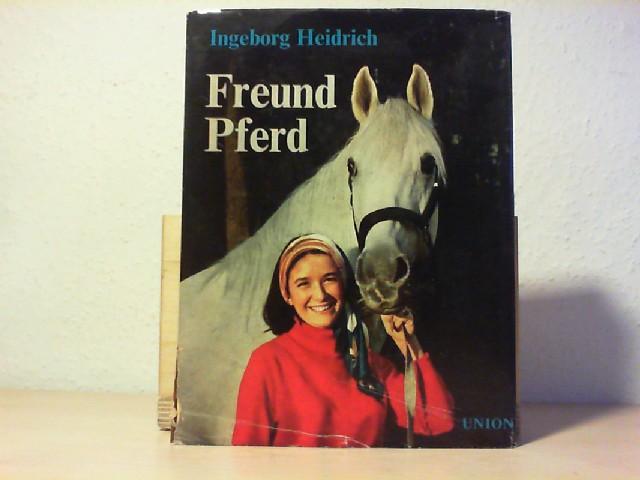 Freund Pferd.