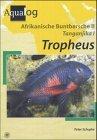 Buntbarsche des Tanganjikasee. Teil 1. Die Arten der Gattung Tropheus Erste /1./ Ausgabe.
