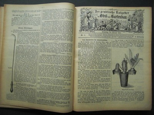 DER PRAKTISCHE RATGEBER IM OBST- UND GARTENBAU. Illustrierte Wochenschrift für Gärtner, Gartenliebhaber und Landwirte.