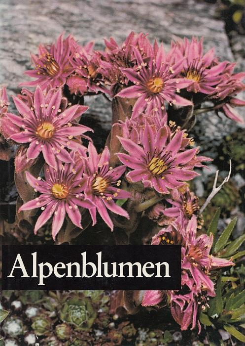 Alpenblumen.