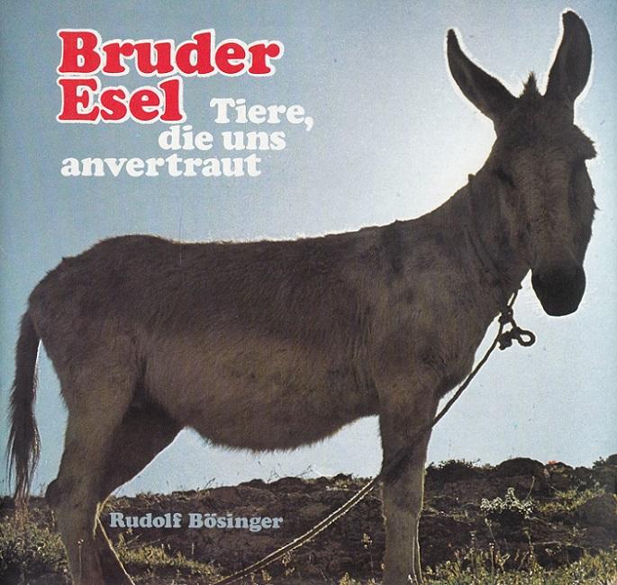 Bruder Esel : Tiere, die uns anvertraut.