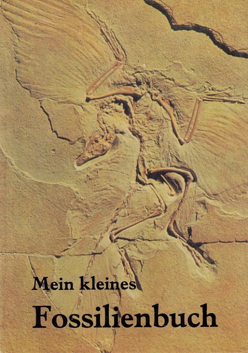Mein kleines Fossilienbuch. Jochen Helms