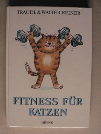 Fitness für Katzen