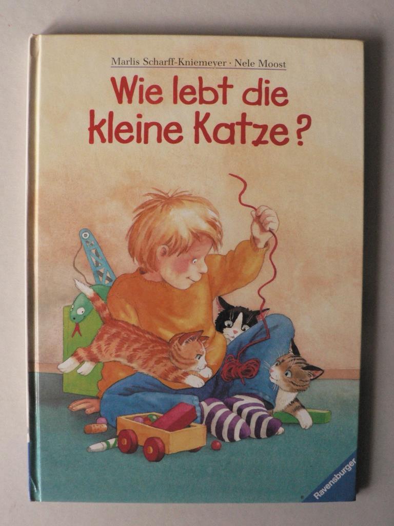Scharff-Kniemeyer, Marlis/Moost, Nele Wie lebt die kleine Katze? 1. Auflage