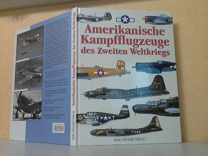 Amerikanische Kampfflugzeuge des Zweiten Weltkriegs