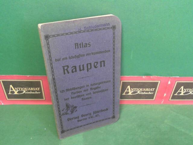Atlas der am häufigsten vorkommenden Raupen - 121 Abbildungen in naturgetreuen Farben mit Angabe der deutschen und lateinischen Namen. 1. Aufl.