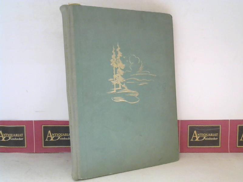 Waldgeschichten, Märchen und Fabeln - Mit einem Geleitwort von Hans Kloepfer. 1. Aufl.